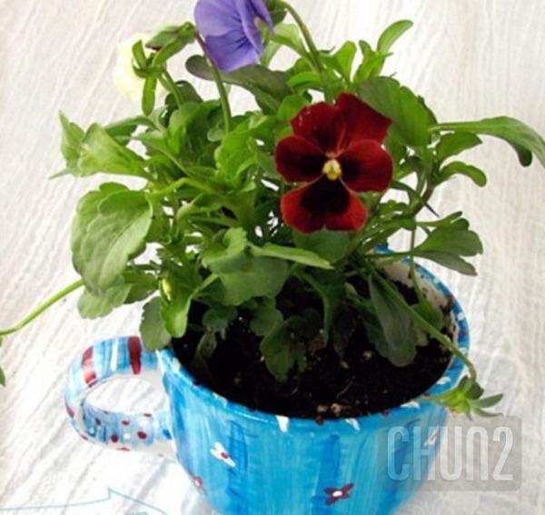 รูป 5 ไอเดียทำกระถางดอกไม้เล็กๆ จากแก้วกาแฟ