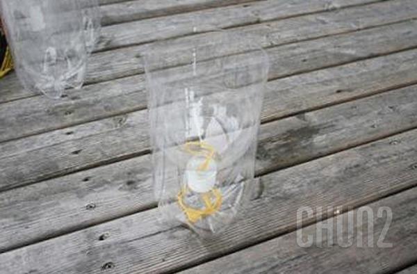รูป 4 ปลูกผักสวนครัว จากขวดน้ำดื่ม