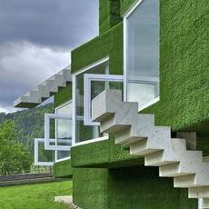 ปลูกหญ้ารอบตัวบ้าน
