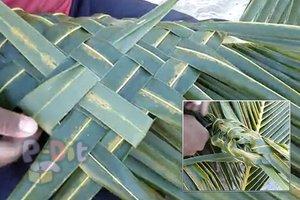 สอนสานตะกร้า จากทางมะพร้าว