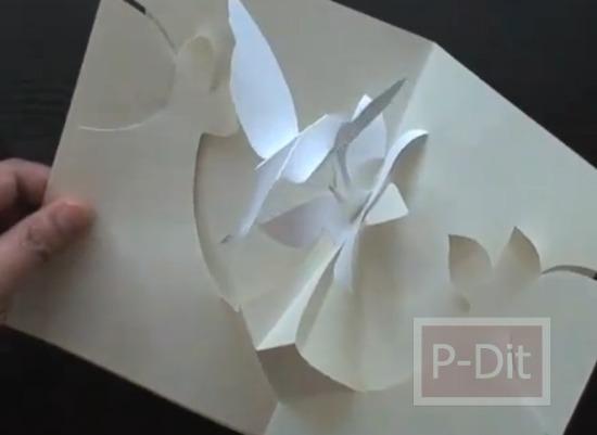 รูป 4 สอนทำการ์ดป็อบอัพ นกฮัมมิ่งเบิร์ด