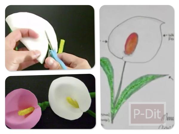 รูป 1 ทำดอกหน้าวัว แบบง่าย