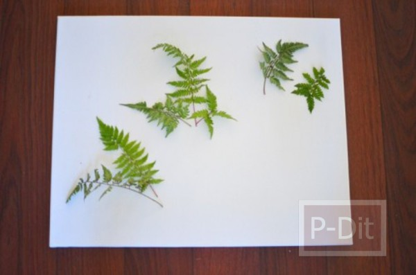 รูป 3 ไอเดียตกแต่งผนังบ้าน ด้วยใบไม้