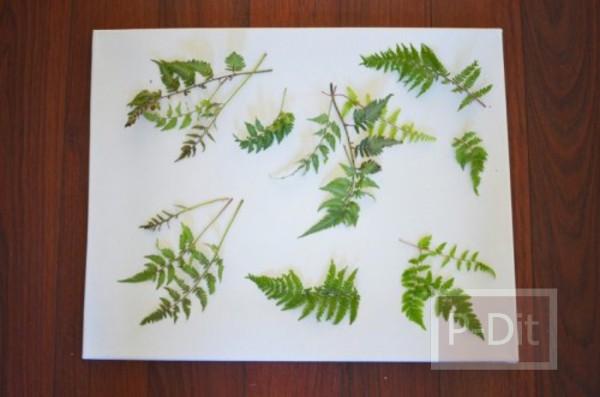 รูป 4 ไอเดียตกแต่งผนังบ้าน ด้วยใบไม้