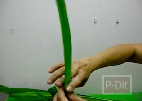 รูป 2 วิธีประดิษฐ์ดอกกุหลาบ จากใบเตย