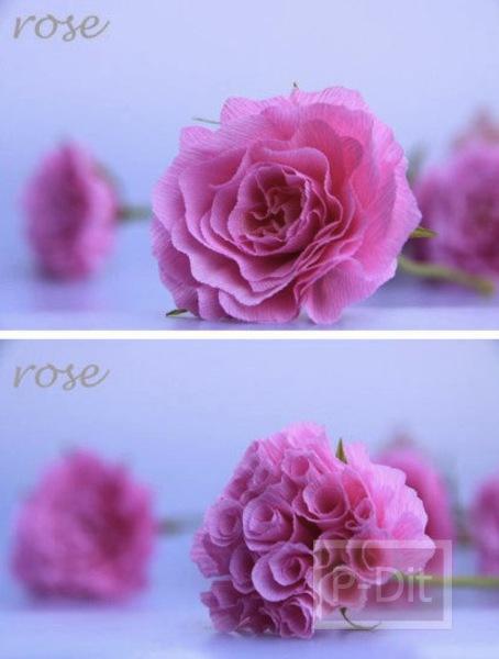 รูป 5 ไอเดียทำดอกไม้สวยๆ จากกระดาษ