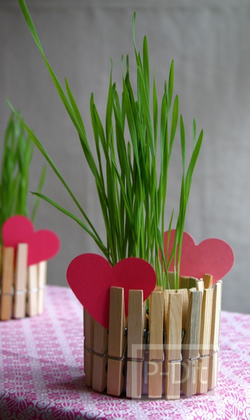 รูป 2 กระถางดอกไม้ กระถางเทียนไข ทำจากไม้หนีบผ้าและอาหารกระป๋อง