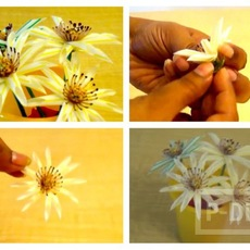 ประดิษฐ์ดอกไม้ จากหลอดกาแฟ