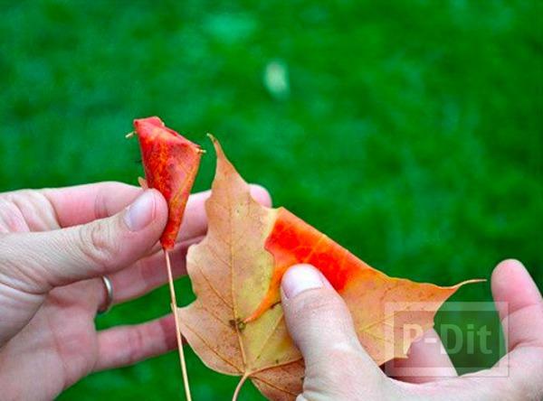 รูป 5 ประดิษฐ์ดอกไม้สวยๆ จากใบเมเปิล