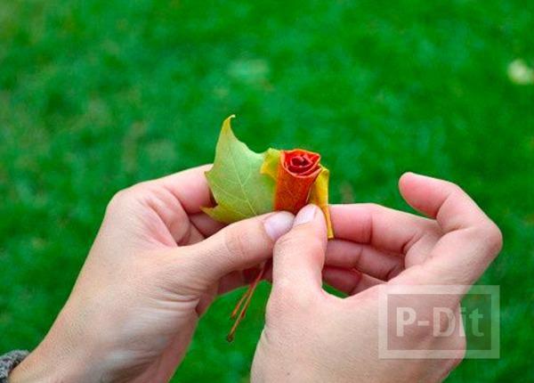 รูป 6 ประดิษฐ์ดอกไม้สวยๆ จากใบเมเปิล