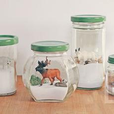 สัตว์ป่า ในขวดแก้ว ตกแต่งแบบง่ายๆ