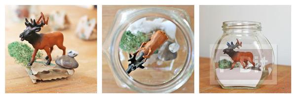 รูป 4 สัตว์ป่า ในขวดแก้ว ตกแต่งแบบง่ายๆ