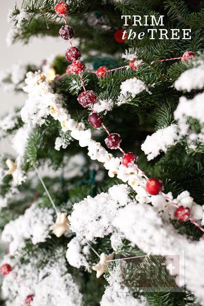 รูป 1 ต้นคริสต์มาส ตกแต่งจากของกิน ร้อยเชือก