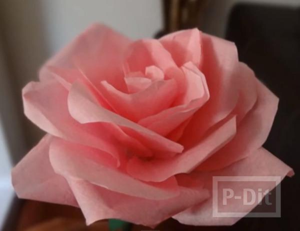 ดอกกุหลาบ ทำเอง จากกระดาษ