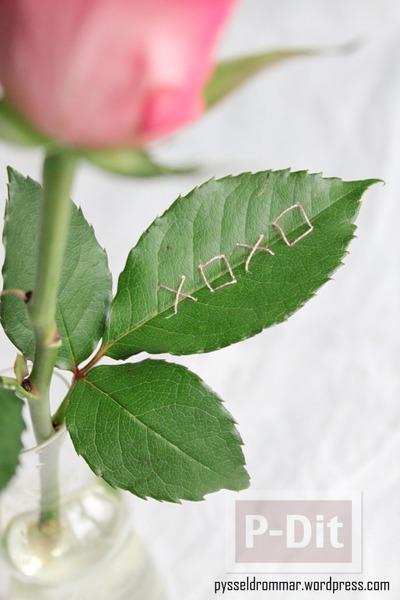 รูป 4 เติมข้อความบอกรักสั้นๆ บนใบไม้