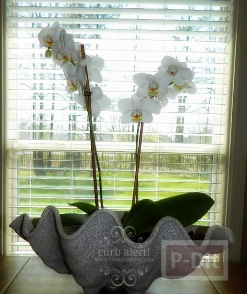 รูป 5 แจกันดอกไม้ ทำจากพลาสติก ลายหอย