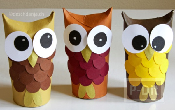 นกฮูกน่ารักๆ ทำจากแกนกระดาษทิชชู