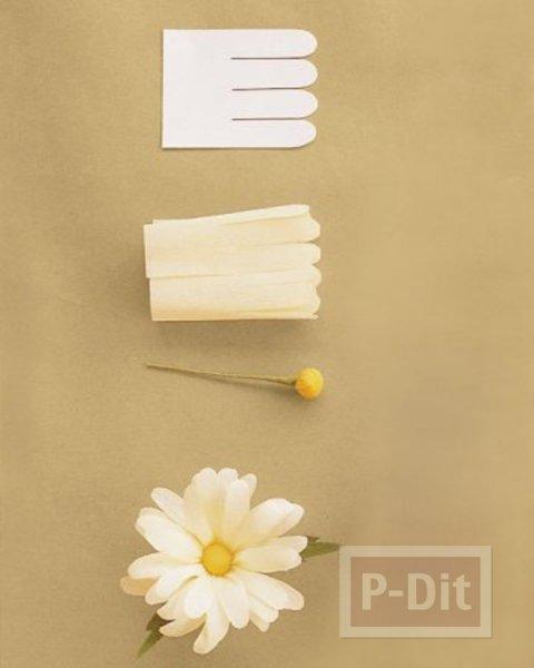 รูป 2 ดอกไม้กระดาษ ดอกแอสเตอร์