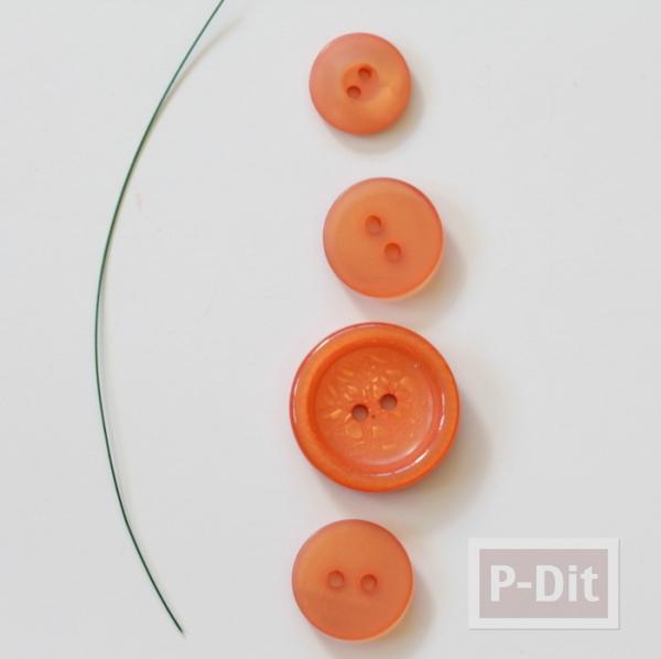 รูป 3 ฟักทองกระดุม สีส้มสวยๆ