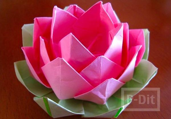 รูป 1 ดอกบัว พับกระดาษสีสวย