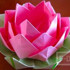 ดอกบัว พับกระดาษสีสวย