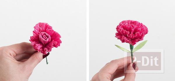 รูป 2 ดอกคาเนชั่น ทำจากกระดาษย่น