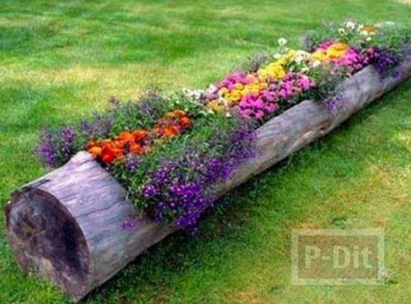 รูป 5 ท่อนไม้ประดับดอกไม้ สีสด ตกแต่งสวน