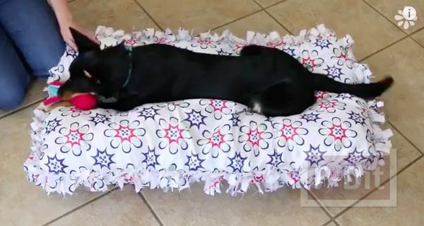 รูป 2 ทำที่นอนสุนัข จากหมอนเก่า หุ้มปลอกหมอนใหม่