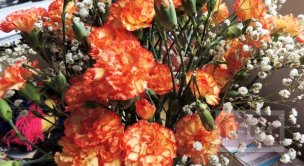 รูป 2 สอนจัดช่อดอกไม้ สวยๆ ผูกริบบิ้น