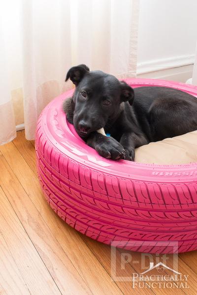 รูป 2 ที่นอนหมา ทำยางรถยนต์ พ่นสีสด
