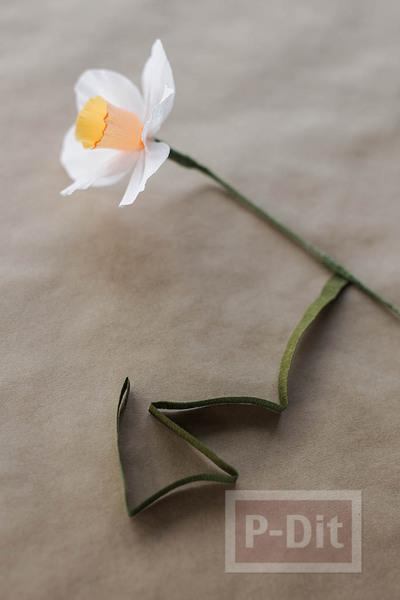 รูป 3 สอนทำดอกไม้กระดาษ ดอกดารารัตน์(Daffodil)