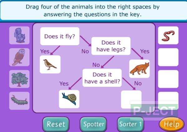 รูป 3 เรียนวงจรชีวิตสัตว์ จากห่วงโซ่อาหาร