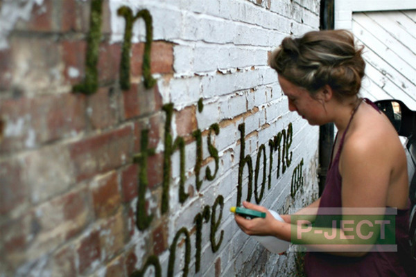 รูป 1 ตกแต่งกำแพงบ้าน ด้วยมอสผสมนม…