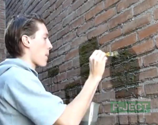 รูป 4 ตกแต่งกำแพงบ้าน ด้วยมอสผสมนม…
