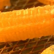 โรงงานทำน้ำผึ้ง