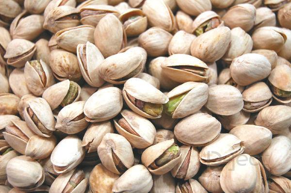 กว่าจะเป็น ถั่วพิสทาชิโอ(Pistachio Nuts)