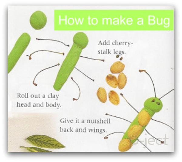 รูป 2 เรียนรู้เรื่องแมลง จากใบไม้ เปลือกถั่ว