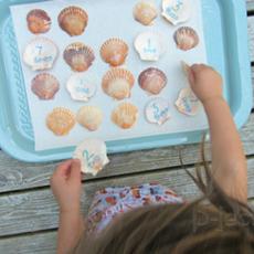 เกมส์คณิตศาสตร์ จับคู่ตัวเลข จากเปลือกหอย